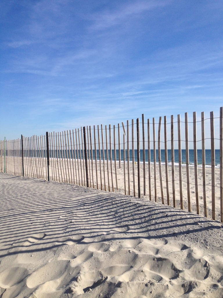 Far Rockaway storm surge dune redesign